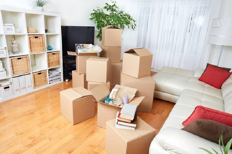 Custom boxs